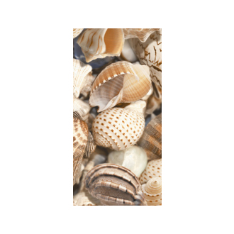 <span>Sea Breeze Shells Decore №2</span>