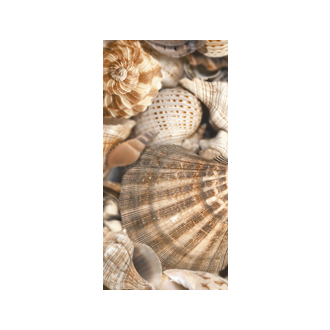 Sea Breeze Shells <span>Decore №3</span>